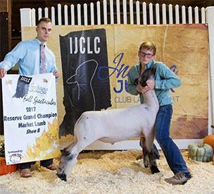 AcMoody Farms | Show Lamb Winners